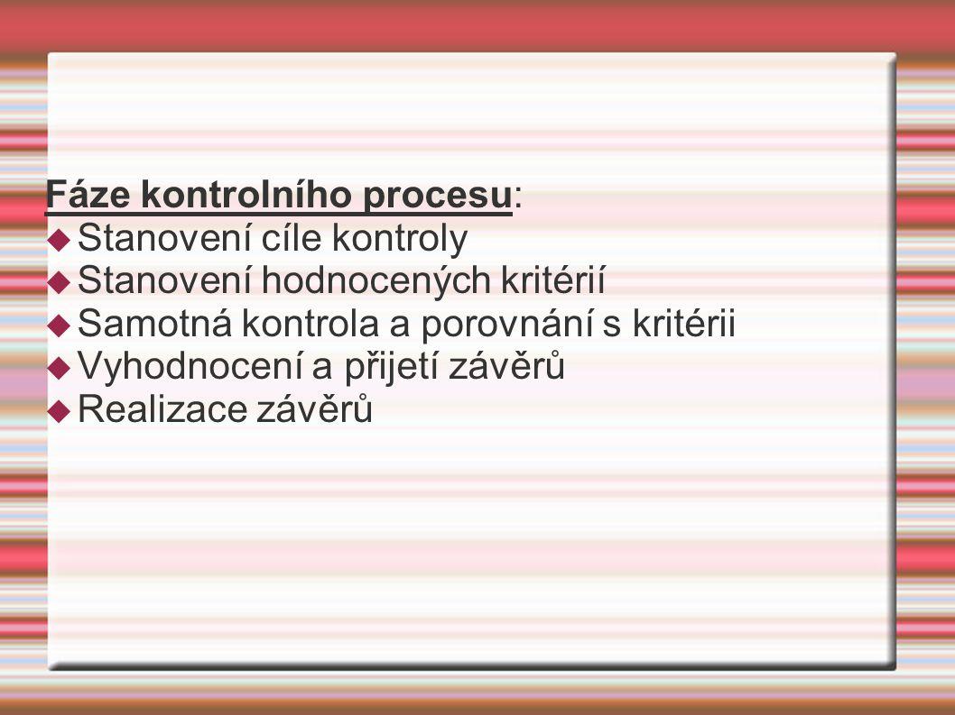 Fáze kontrolního procesu:  Stanovení cíle kontroly  Stanovení hodnocených kritérií  Samotná kontrola a porovnání s kritérii  Vyhodnocení a přijetí závěrů  Realizace závěrů