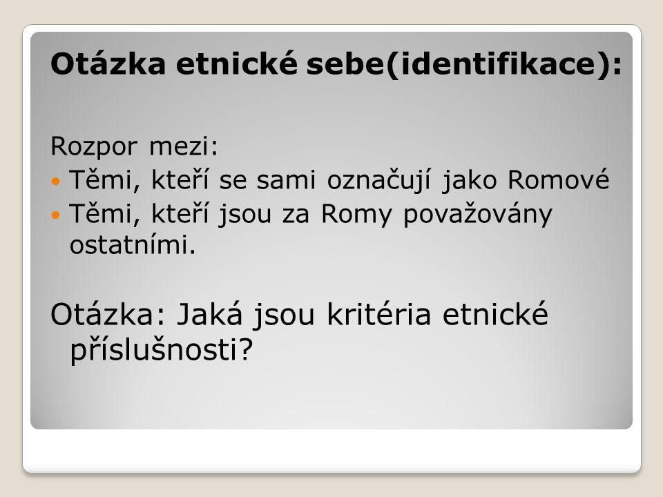 Otázka etnické sebe(identifikace): Rozpor mezi: Těmi, kteří se sami označují jako Romové Těmi, kteří jsou za Romy považovány ostatními. Otázka: Jaká j