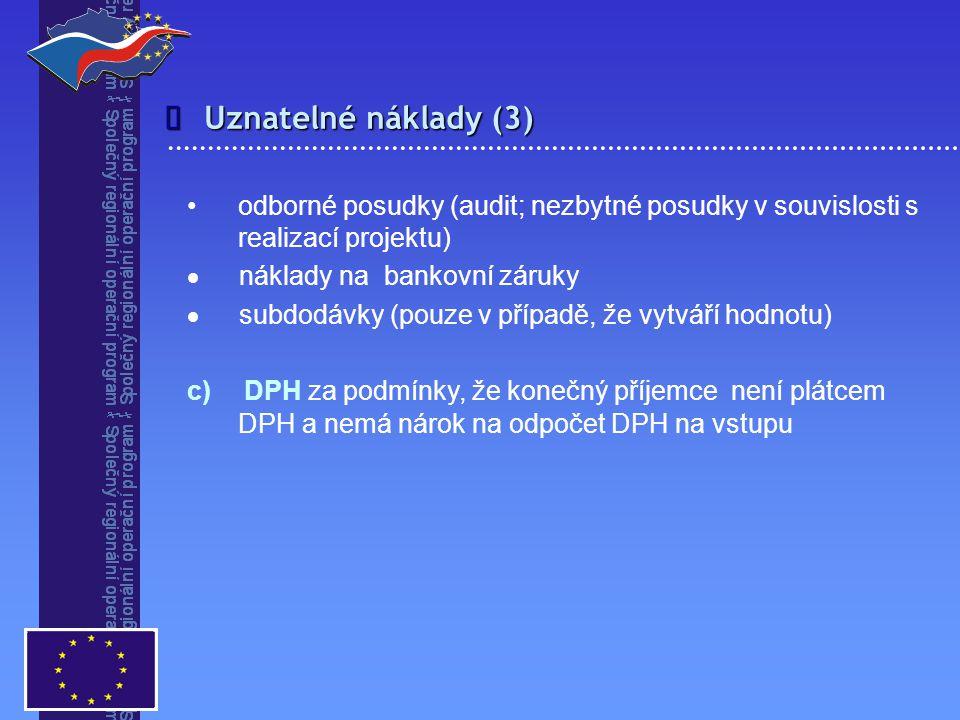  odborné posudky (audit; nezbytné posudky v souvislosti s realizací projektu)  náklady na bankovní záruky  subdodávky (pouze v případě, že vytváří