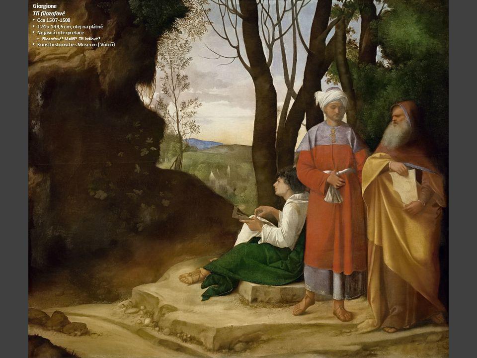 Giorgione Tři filozofové Cca 1507-1508 Cca 1507-1508 124 x 144,5 cm, olej na plátně 124 x 144,5 cm, olej na plátně Nejasná interpretace Nejasná interp