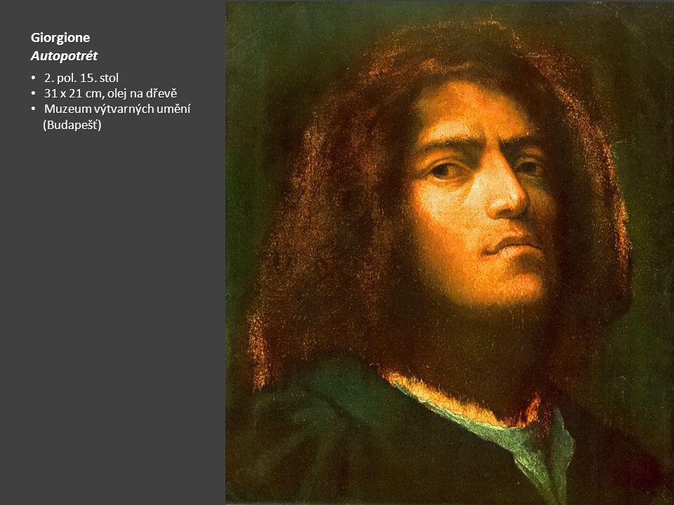 GiorgioneAutopotrét 2. pol. 15. stol 2. pol. 15. stol 31 x 21 cm, olej na dřevě 31 x 21 cm, olej na dřevě Muzeum výtvarných umění Muzeum výtvarných um