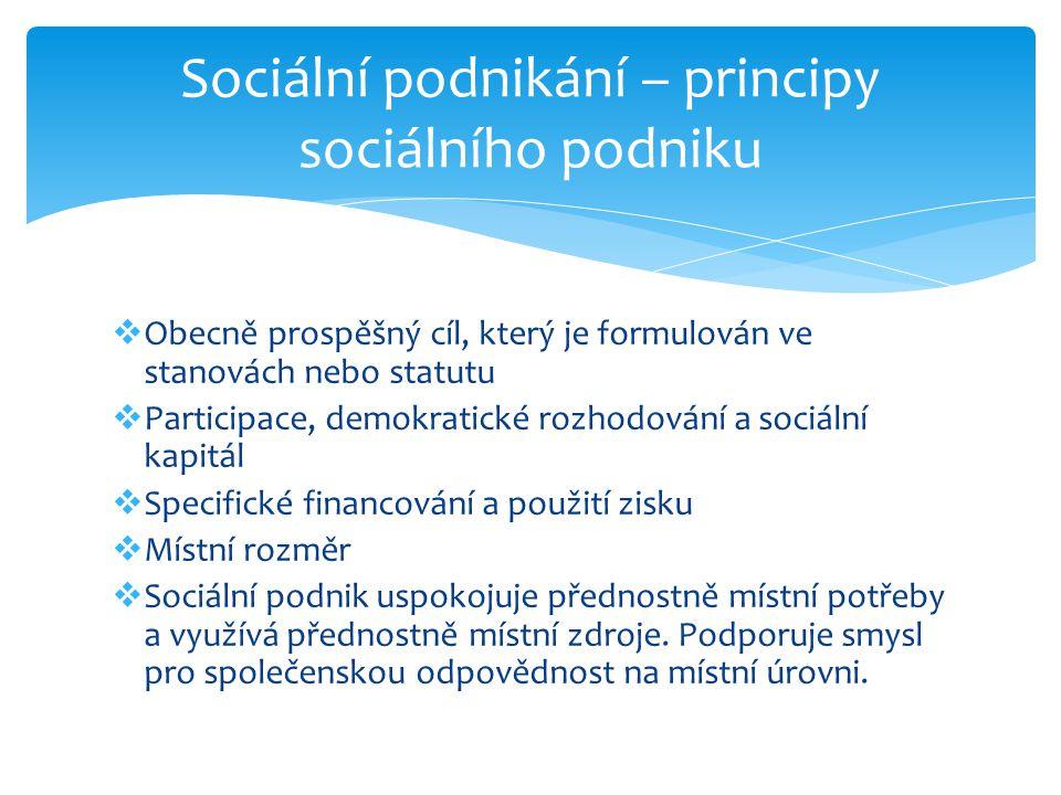  Obecně prospěšný cíl, který je formulován ve stanovách nebo statutu  Participace, demokratické rozhodování a sociální kapitál  Specifické financování a použití zisku  Místní rozměr  Sociální podnik uspokojuje přednostně místní potřeby a využívá přednostně místní zdroje.