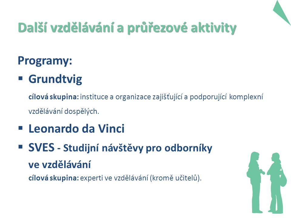 Další vzdělávání a průřezové aktivity Programy:  Grundtvig cílová skupina: instituce a organizace zajišťující a podporující komplexní vzdělávání dospělých.