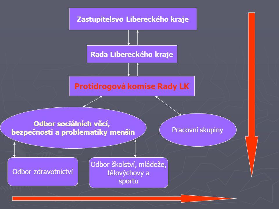 Zastupitelsvo Libereckého kraje Rada Libereckého kraje Protidrogová komise Rady LK Pracovní skupiny Odbor sociálních věcí, bezpečnosti a problematiky menšin Odbor zdravotnictví Odbor školství, mládeže, tělovýchovy a sportu