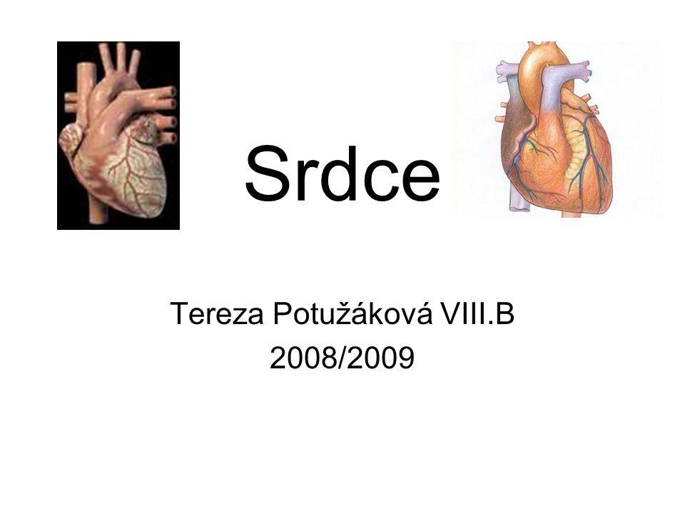Srdce Tereza Potužáková VIII.B 2008/2009