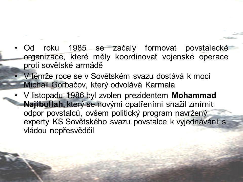 Od roku 1985 se začaly formovat povstalecké organizace, které měly koordinovat vojenské operace proti sovětské armádě V témže roce se v Sovětském svaz