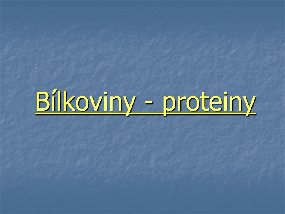 Bílkoviny - proteiny