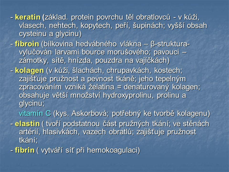 - keratin (základ. protein povrchu těl obratlovců - v kůži, vlasech, nehtech, kopytech, peří, šupinách; vyšší obsah cysteinu a glycinu) - fibroin (bíl