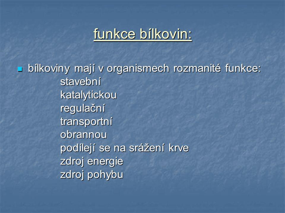 funkce bílkovin: bílkoviny mají v organismech rozmanité funkce: bílkoviny mají v organismech rozmanité funkce: stavební stavební katalytickou katalyti