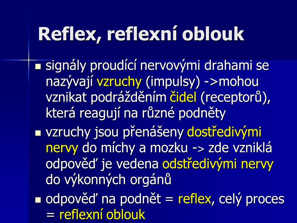Reflex, reflexní oblouk signály proudící nervovými drahami se nazývají vzruchy (impulsy) ->mohou vznikat podrážděním čidel (receptorů), která reagují