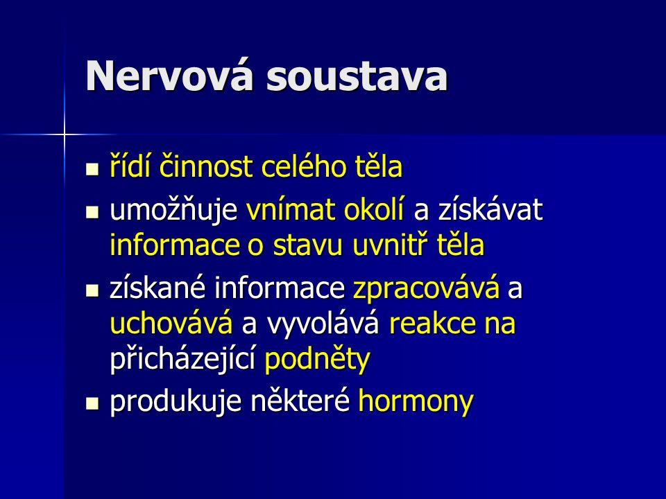 Nervová soustava 2 části: 2 části: centrální nervová soustava (CNS) centrální nervová soustava (CNS) - ˃ mozek, mícha - ˃ mozek, mícha obvodová nervová soustava (periferní NS) obvodová nervová soustava (periferní NS) - ˃ nervy, nervové uzliny - ˃ nervy, nervové uzliny Které části nervové soustavy patří do centrální NS a které do periferní NS.