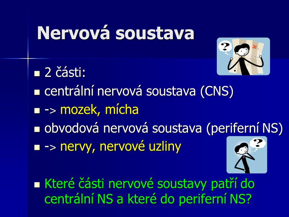 Nervová soustava 2 části: 2 části: centrální nervová soustava (CNS) centrální nervová soustava (CNS) - ˃ mozek, mícha - ˃ mozek, mícha obvodová nervov