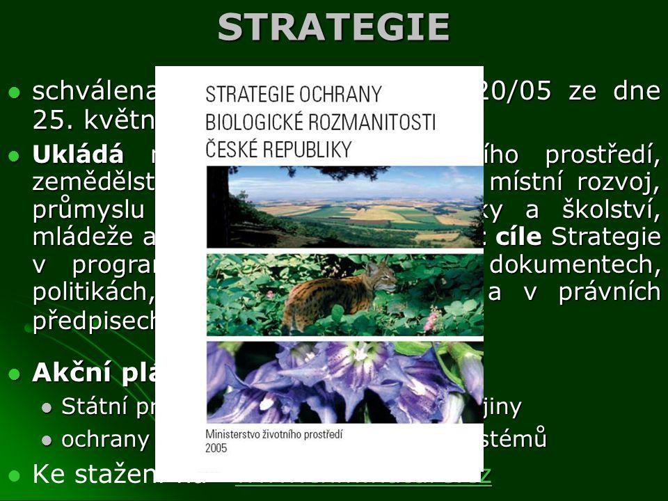 STRATEGIE schválena usnesením vlády č. 620/05 ze dne 25. května 2005 schválena usnesením vlády č. 620/05 ze dne 25. května 2005 Ukládá ministru doprav