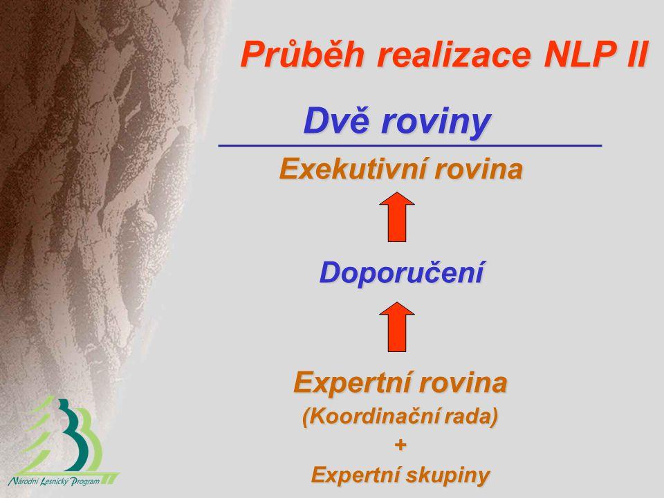 Průběh realizace NLP II Dvě roviny Expertní rovina (Koordinační rada) + Expertní skupiny Doporučení Exekutivní rovina