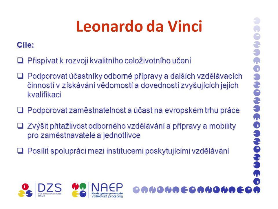 Leonardo da Vinci Cíle:  Přispívat k rozvoji kvalitního celoživotního učení  Podporovat účastníky odborné přípravy a dalších vzdělávacích činností v získávání vědomostí a dovedností zvyšujících jejich kvalifikaci  Podporovat zaměstnatelnost a účast na evropském trhu práce  Zvýšit přitažlivost odborného vzdělávání a přípravy a mobility pro zaměstnavatele a jednotlivce  Posílit spolupráci mezi institucemi poskytujícími vzdělávání