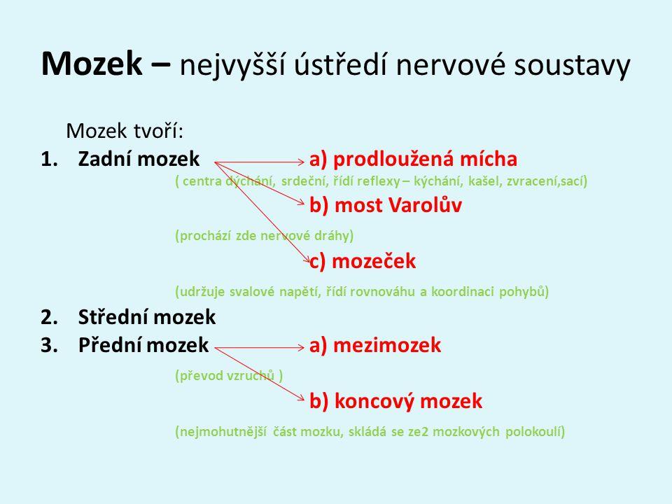 Mozek – nejvyšší ústředí nervové soustavy Mozek tvoří: 1.Zadní mozek a) prodloužená mícha ( centra dýchání, srdeční, řídí reflexy – kýchání, kašel, zvracení,sací) b) most Varolův (prochází zde nervové dráhy) c) mozeček (udržuje svalové napětí, řídí rovnováhu a koordinaci pohybů) 2.Střední mozek 3.Přední mozek a) mezimozek (převod vzruchů ) b) koncový mozek (nejmohutnější část mozku, skládá se ze2 mozkových polokoulí)