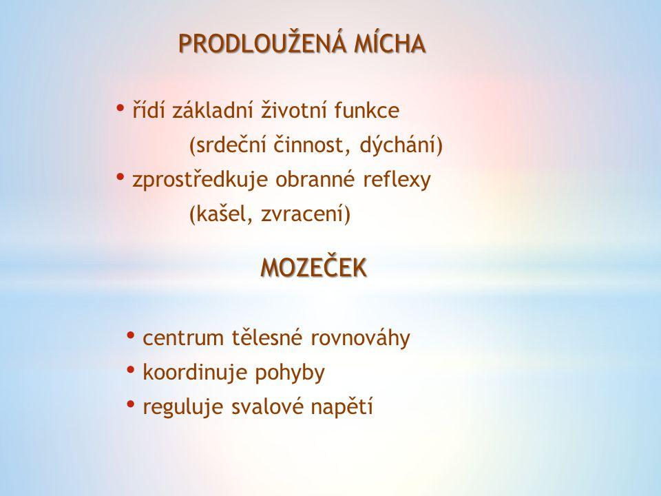 STŘEDNÍ MOZEK umístění reflexů se zvukovými a světelnými podněty MEZIMOZEK ovlivňuje činnost útrobních orgánů termoregulace sexuální funkce KONCOVÝ MOZEK kryt mozkovou kůrou, členěnou do závitů (centrum pro zpracování podnětů – zrak, chuť sluch)