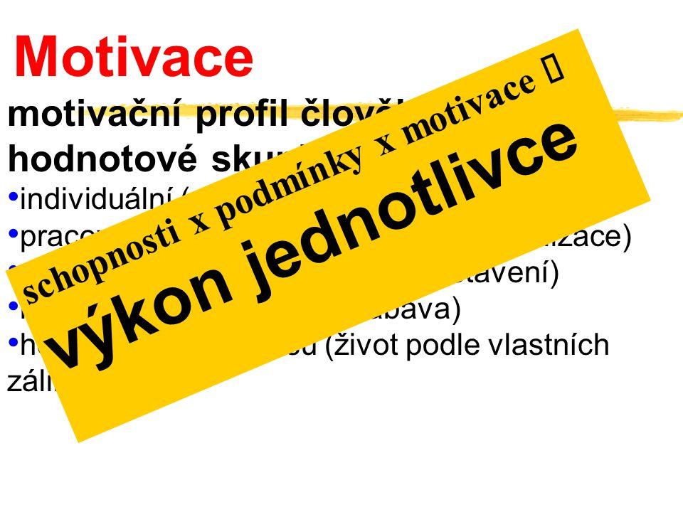 Motivace motivační profil člověka  hodnotové skupiny: individuální (spokojený život, rodina, domov) pracovní (sebezdokonalování, seberealizace) spole