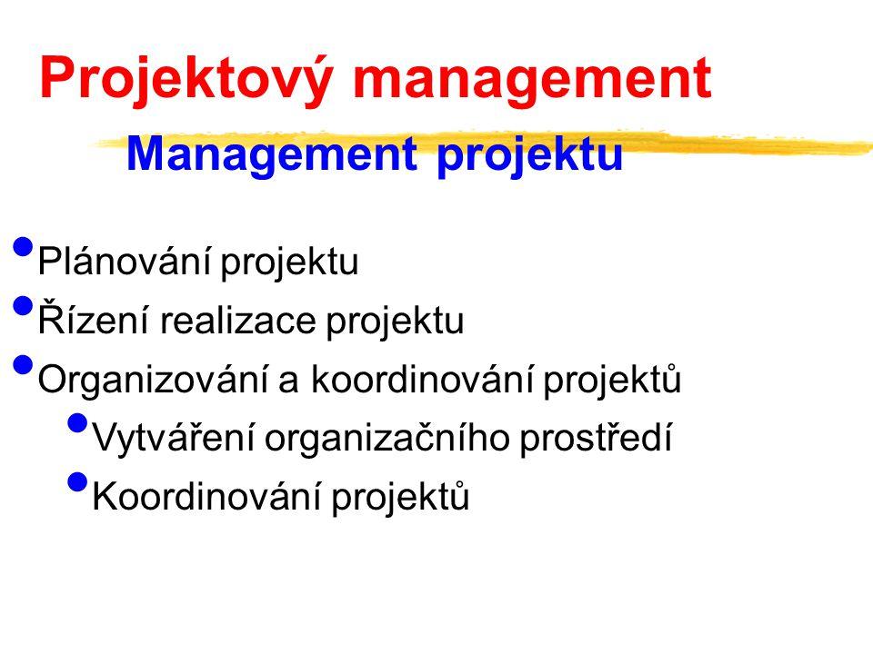 Plánování projektu Řízení realizace projektu Organizování a koordinování projektů Vytváření organizačního prostředí Koordinování projektů Projektový m