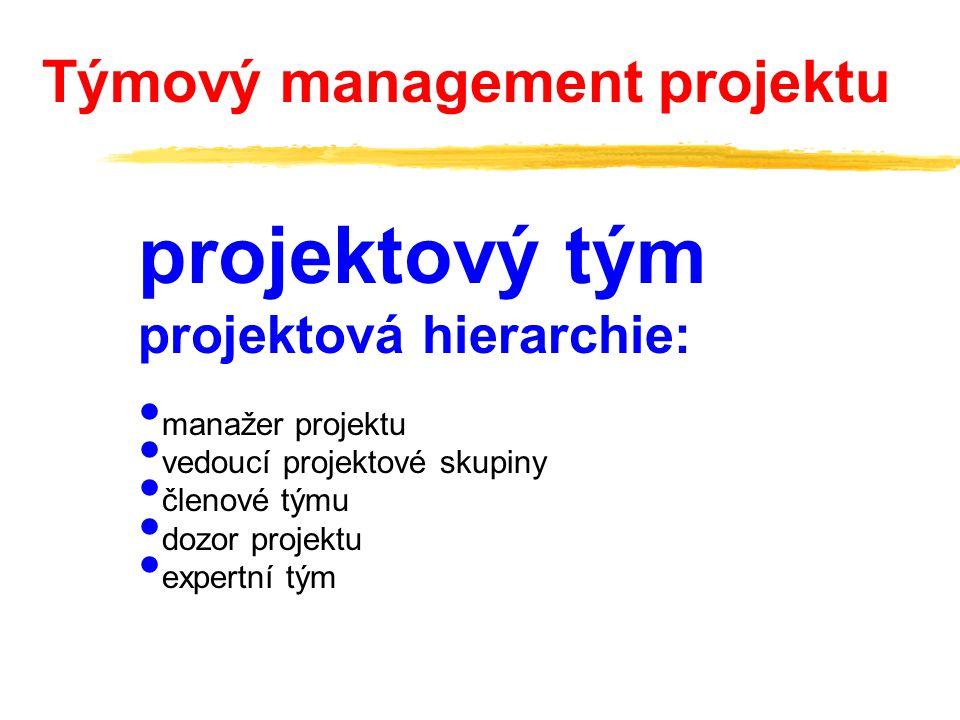 projektový tým projektová hierarchie: manažer projektu vedoucí projektové skupiny členové týmu dozor projektu expertní tým Týmový management projektu