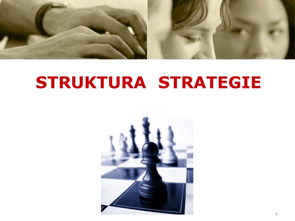 7 STRUKTURA STRATEGIE