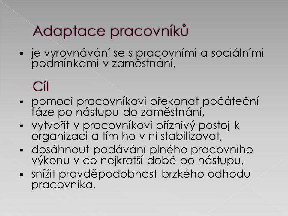 Osvojení si profesionálních aktivit Zvládání nároků nového pracovního prostředí Osvojení pracovních a technologických postupů Přizpůsobení se pracovním směnám a pracovnímu režimu Pochopení fungování organizace jako celku Přizpůsobení se vztahům na pracovišti Pracovní adaptace Sociální adaptace