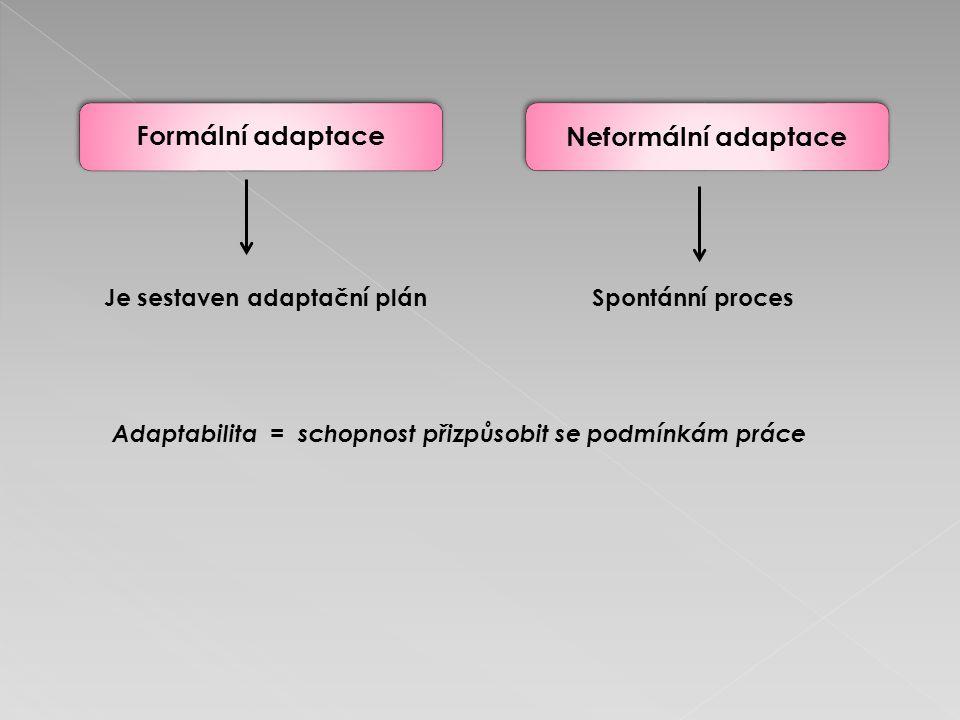 Neformální adaptaceFormální adaptace Je sestaven adaptační plánSpontánní proces Adaptabilita = schopnost přizpůsobit se podmínkám práce