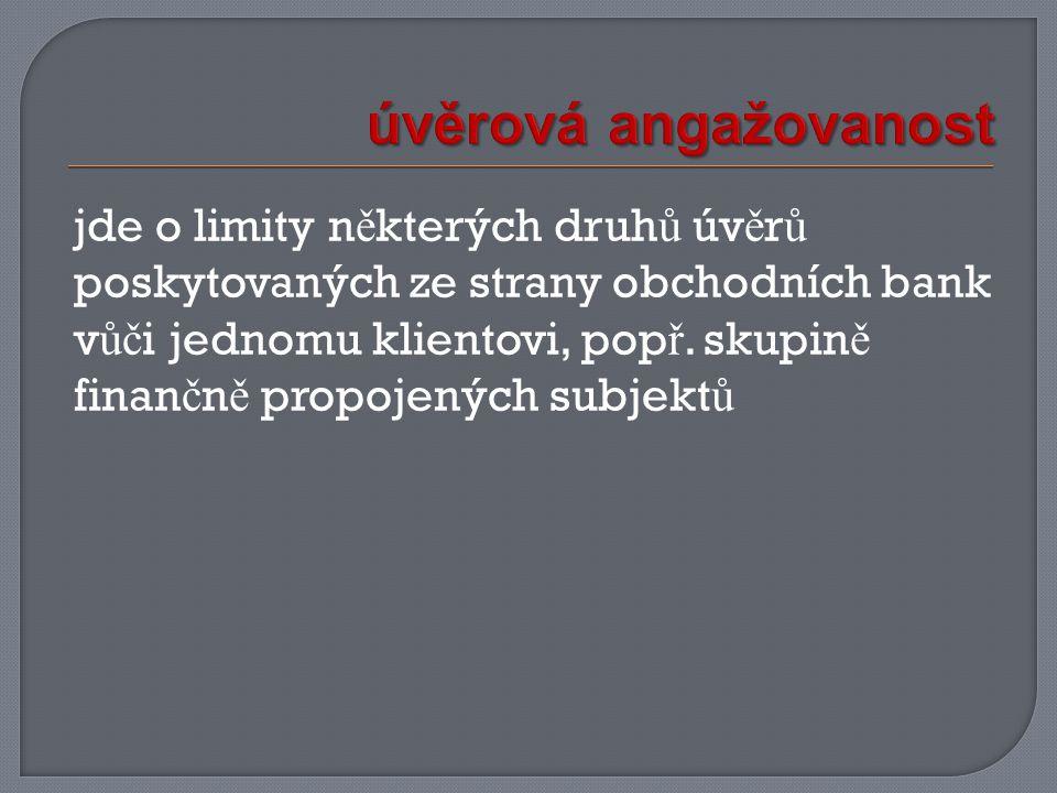jde o limity n ě kterých druh ů úv ě r ů poskytovaných ze strany obchodních bank v ůč i jednomu klientovi, pop ř.
