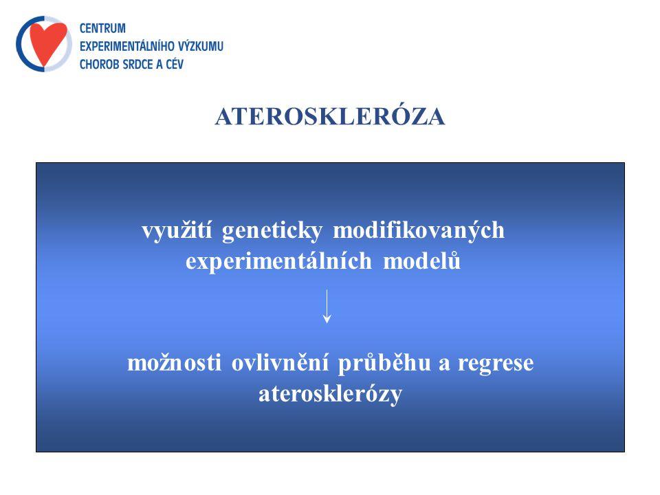 ATEROSKLERÓZA využití geneticky modifikovaných experimentálních modelů možnosti ovlivnění průběhu a regrese aterosklerózy