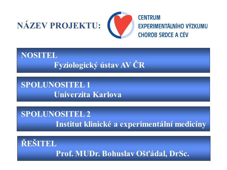 MORTALITA CHOROBY SRDCE A CÉV 54,4 ischemická choroba srdeční jiné nádory úrazy, otravy zažívací onemocnění respirační onemocnění 23,8 7,9 19,3 8,1 6,2 4,1 30,6 jiné choroby srdce a cév