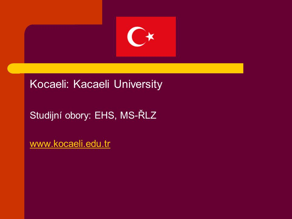Kocaeli: Kacaeli University Studijní obory: EHS, MS-ŘLZ www.kocaeli.edu.tr