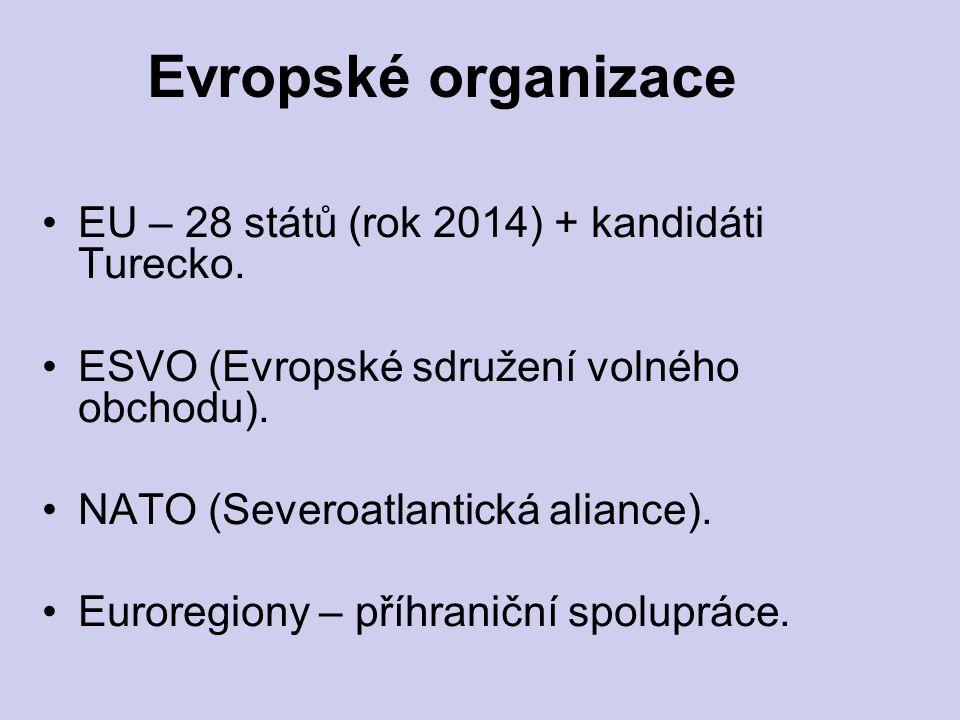 EU – 28 států (rok 2014) + kandidáti Turecko. ESVO (Evropské sdružení volného obchodu). NATO (Severoatlantická aliance). Euroregiony – příhraniční spo