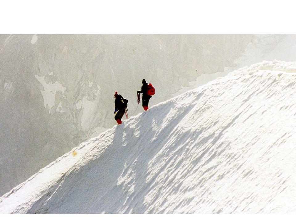 Sněžná čára je hranice trvalé sněhové pokrývky, vlastně také hranice tání sněhu.