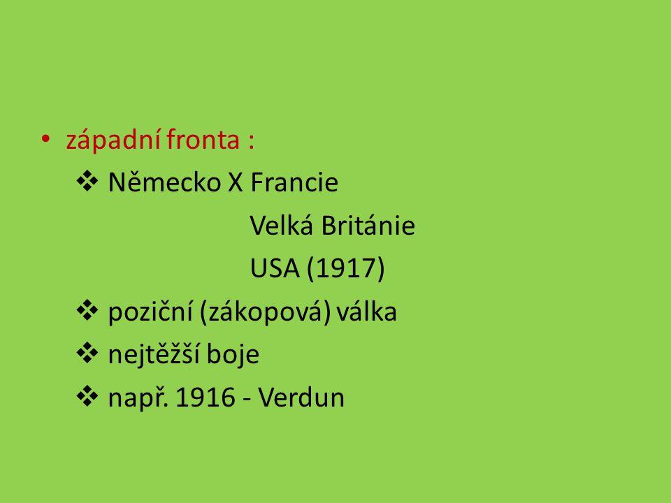 západní fronta :  Německo X Francie Velká Británie USA (1917)  poziční (zákopová) válka  nejtěžší boje  např. 1916 - Verdun