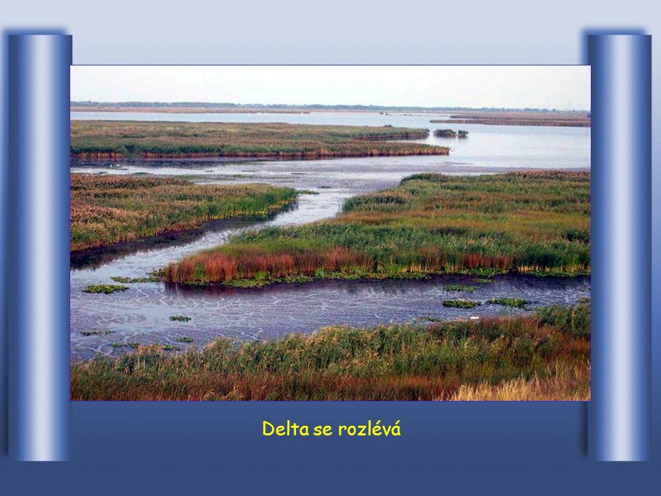 Potom následuje rozvětvená delta Letea