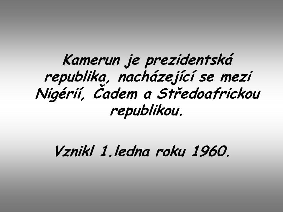 Kamerun je prezidentská republika, nacházející se mezi Nigérií, Čadem a Středoafrickou republikou. Vznikl 1.ledna roku 1960.