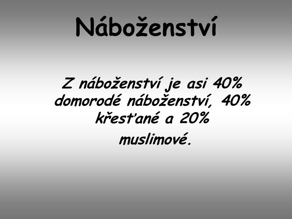 Náboženství Z náboženství je asi 40% domorodé náboženství, 40% křesťané a 20% muslimové.