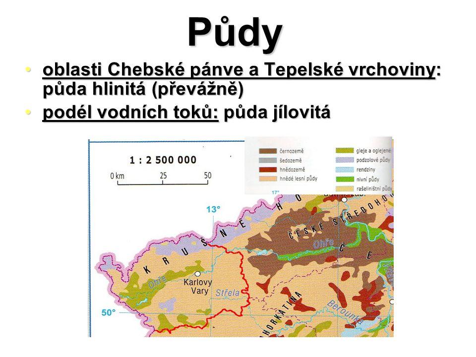 Půdy oblasti Chebské pánve a Tepelské vrchoviny: půda hlinitá (převážně)oblasti Chebské pánve a Tepelské vrchoviny: půda hlinitá (převážně) podél vodn