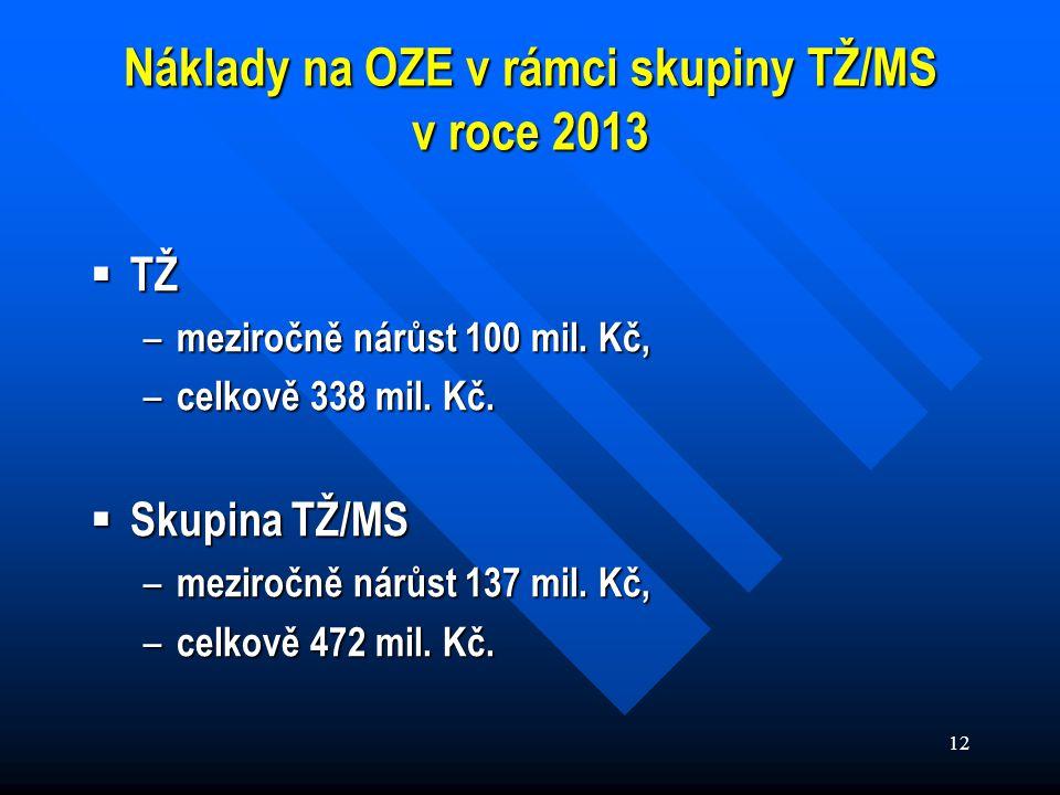 12 Náklady na OZE v rámci skupiny TŽ/MS v roce 2013  TŽ – meziročně nárůst 100 mil.