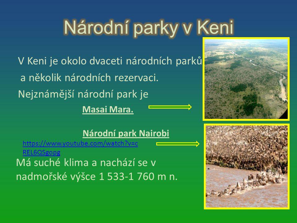 V Keni je okolo dvaceti národních parků a několik národních rezervaci. Nejznámější národní park je Masai Mara. Národní park Nairobi Má suché klima a n