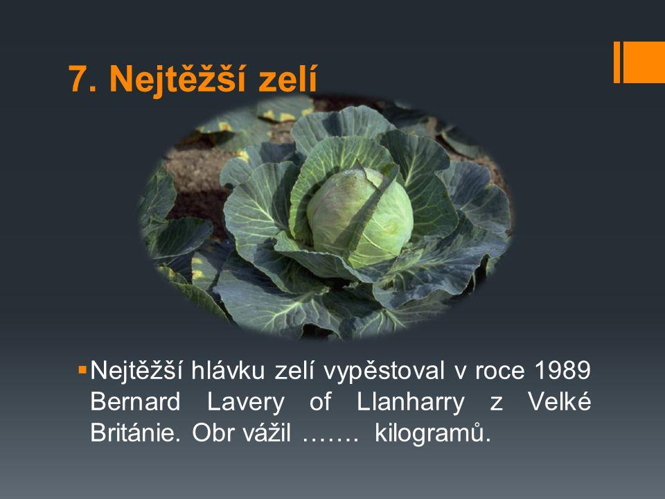 7. Nejtěžší zelí  Nejtěžší hlávku zelí vypěstoval v roce 1989 Bernard Lavery of Llanharry z Velké Británie. Obr vážil ……. kilogramů.