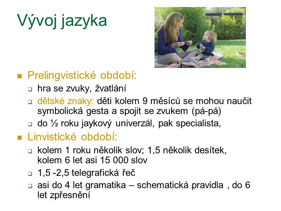 Vývoj jazyka Prelingvistické období:  hra se zvuky, žvatlání  dětské znaky: děti kolem 9 měsíců se mohou naučit symbolická gesta a spojit se zvukem