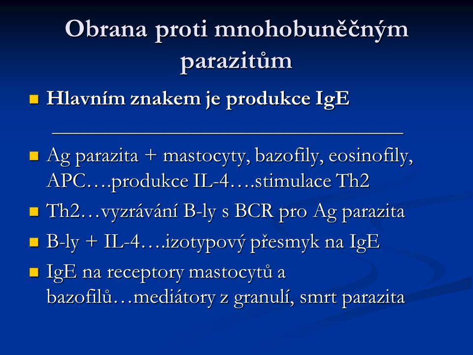 Obrana proti mnohobuněčným parazitům Hlavním znakem je produkce IgE Hlavním znakem je produkce IgE______________________________________ Ag parazita + mastocyty, bazofily, eosinofily, APC….produkce IL-4….stimulace Th2 Ag parazita + mastocyty, bazofily, eosinofily, APC….produkce IL-4….stimulace Th2 Th2…vyzrávání B-ly s BCR pro Ag parazita Th2…vyzrávání B-ly s BCR pro Ag parazita B-ly + IL-4….izotypový přesmyk na IgE B-ly + IL-4….izotypový přesmyk na IgE IgE na receptory mastocytů a bazofilů…mediátory z granulí, smrt parazita IgE na receptory mastocytů a bazofilů…mediátory z granulí, smrt parazita