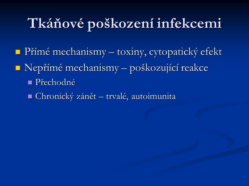 Tkáňové poškození infekcemi Přímé mechanismy – toxiny, cytopatický efekt Přímé mechanismy – toxiny, cytopatický efekt Nepřímé mechanismy – poškozující reakce Nepřímé mechanismy – poškozující reakce Přechodné Přechodné Chronický zánět – trvalé, autoimunita Chronický zánět – trvalé, autoimunita