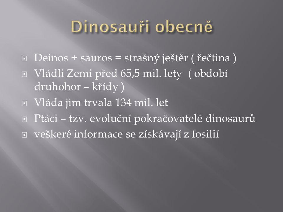  Deinos + sauros = strašný ještěr ( řečtina )  Vládli Zemi před 65,5 mil. lety ( období druhohor – křídy )  Vláda jim trvala 134 mil. let  Ptáci –