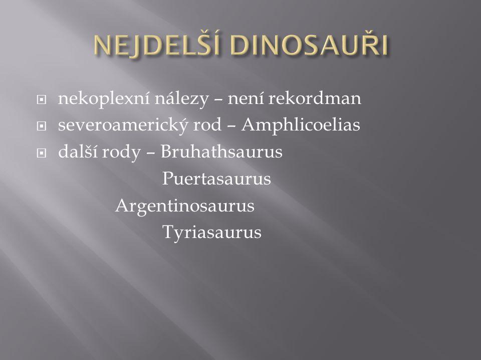  nekoplexní nálezy – není rekordman  severoamerický rod – Amphlicoelias  další rody – Bruhathsaurus Puertasaurus Argentinosaurus Tyriasaurus