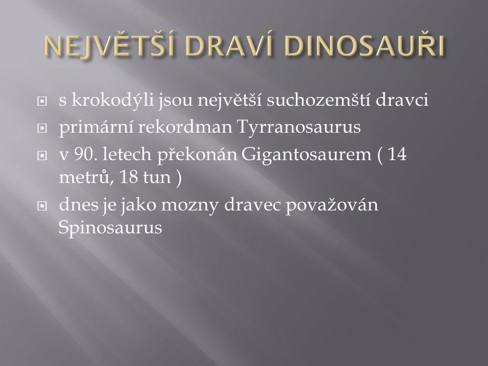  s krokodýli jsou největší suchozemští dravci  primární rekordman Tyrranosaurus  v 90. letech překonán Gigantosaurem ( 14 metrů, 18 tun )  dnes je