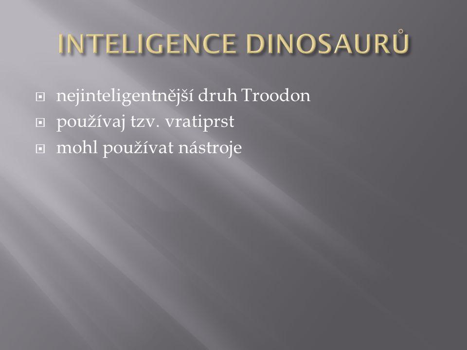  nejinteligentnější druh Troodon  používaj tzv. vratiprst  mohl používat nástroje