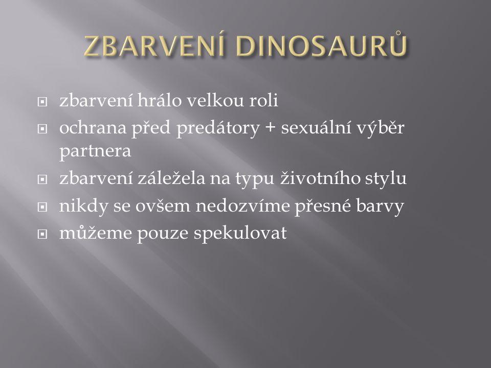  zbarvení hrálo velkou roli  ochrana před predátory + sexuální výběr partnera  zbarvení záležela na typu životního stylu  nikdy se ovšem nedozvíme