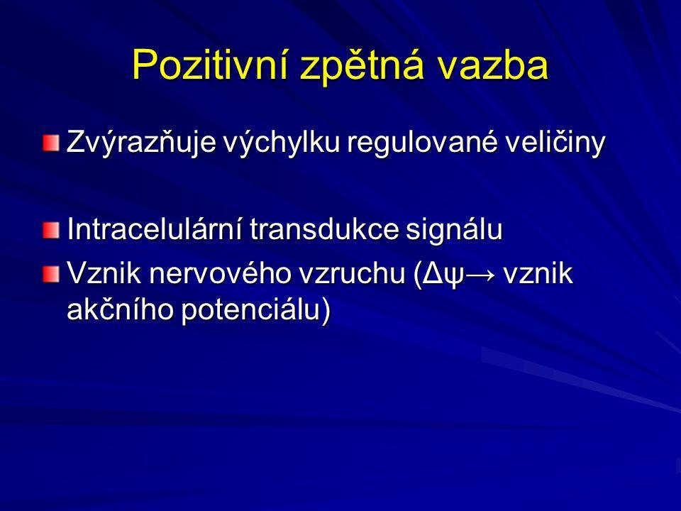 Pozitivní zpětná vazba Zvýrazňuje výchylku regulované veličiny Intracelulární transdukce signálu Vznik nervového vzruchu (Δψ→ vznik akčního potenciálu